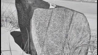 """Rosetta Stone Celebrity Impersonator ROCK STAR Speaks (A.K.A. """"The Rosetta Clone"""") -- :90"""