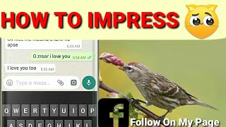 HOW TO IMPRESS A GIRL ON WHATSAPP | HOW TO ?