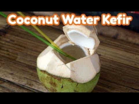 Coconut Water Kefir Great Alternative to Dairy Kefir and More Potent than Yogurt