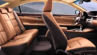 new-background-spa South Pointe Lexus