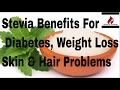 स्टीविया – शुगर और मोटापे में अमृत समान | Stevia Health Benefits for Diabetes Weight Lose