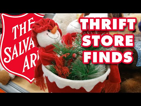 Salvation Army Thrift Store Finds | 2020-09-11
