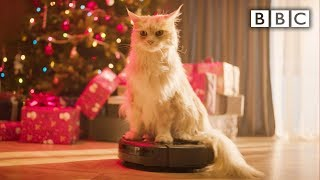 9 hours relaxing sounds of cat hoovering around Christmas tree and presents #XmasLife - BBC