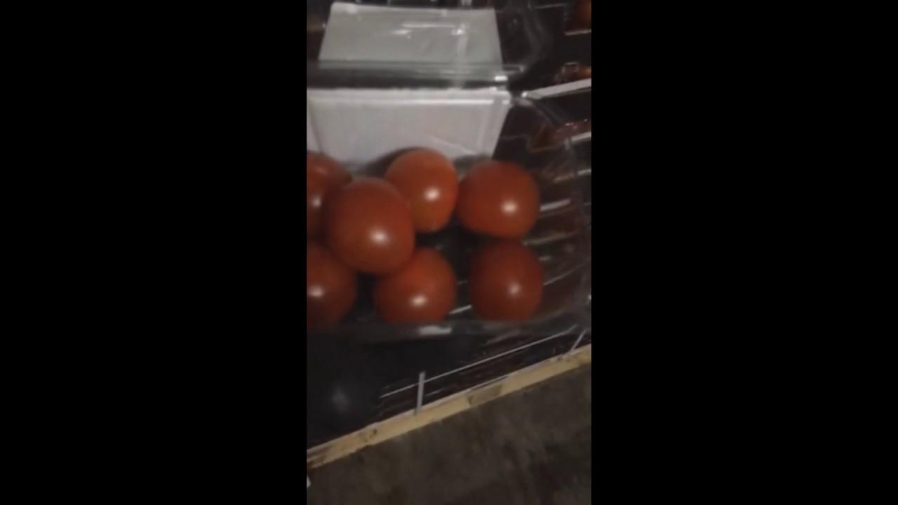 Софийская овощебаза в СПБ, ФРУКТЫ И ОВОЩИ ОПТОМ - YouTube