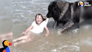 Dog 'Saves' His Little Girl From The Ocean | The Dodo