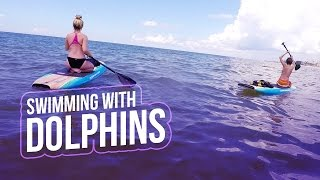 swimming with dolphins vlog   baby ariel