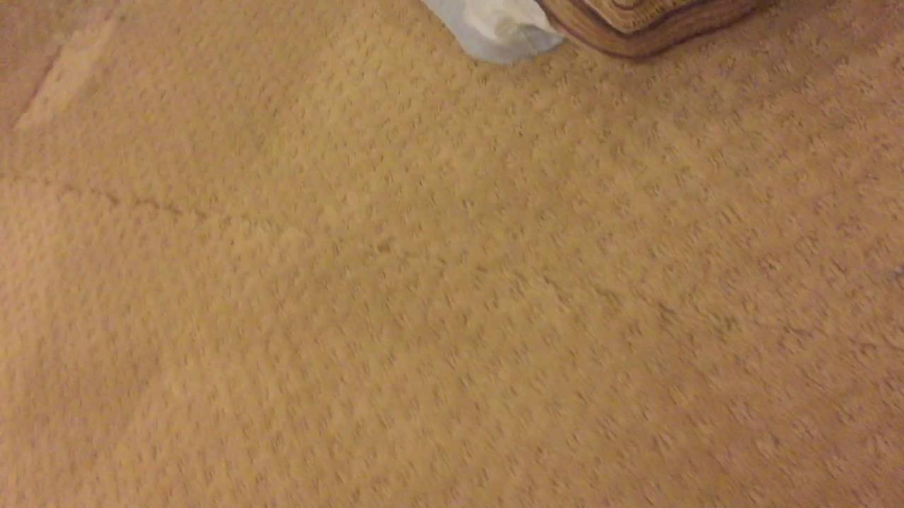 Carpet Seam Repair You
