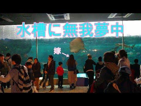 神戸市立 須磨海浜水族園・in兵庫県【ホンダバモスで日本旅行】※パート2に続く