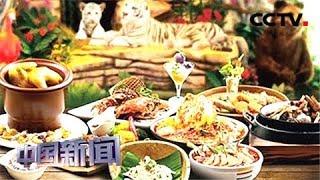 [中国新闻] 亚洲 文明之光 广州亚洲美食节开幕 | CCTV中文国际