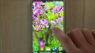 Free sakura garden live wallpaper for Android phones and tablets