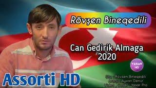 Rovsen Bineqedili - Can Gedirik Almaga 2020  Gorsun O Daglar Yene Boz Qurdunu  Resimi