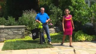 Sun Joe 3-in-1 Blower, Vacuum & Mulcher with Accessories with Kerstin Lindquist
