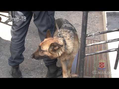 В Кемеровской области вынесен приговор похитителям банкоматов