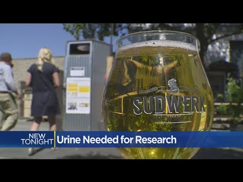 Brewing Company Teaming Up With UC Davis To Collect Urine For Science
