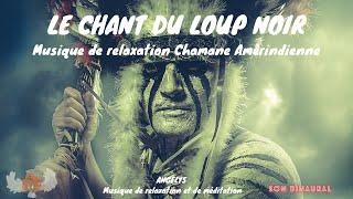 Le chant du Loup Noir Musique de relaxation chamanique Amérindienne ANGELYS musique de relaxation