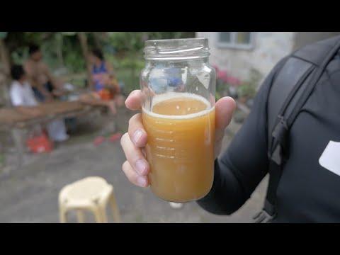 Coconut Wine? Tuba! (Moalboal Part 5) 코코넛 와인?