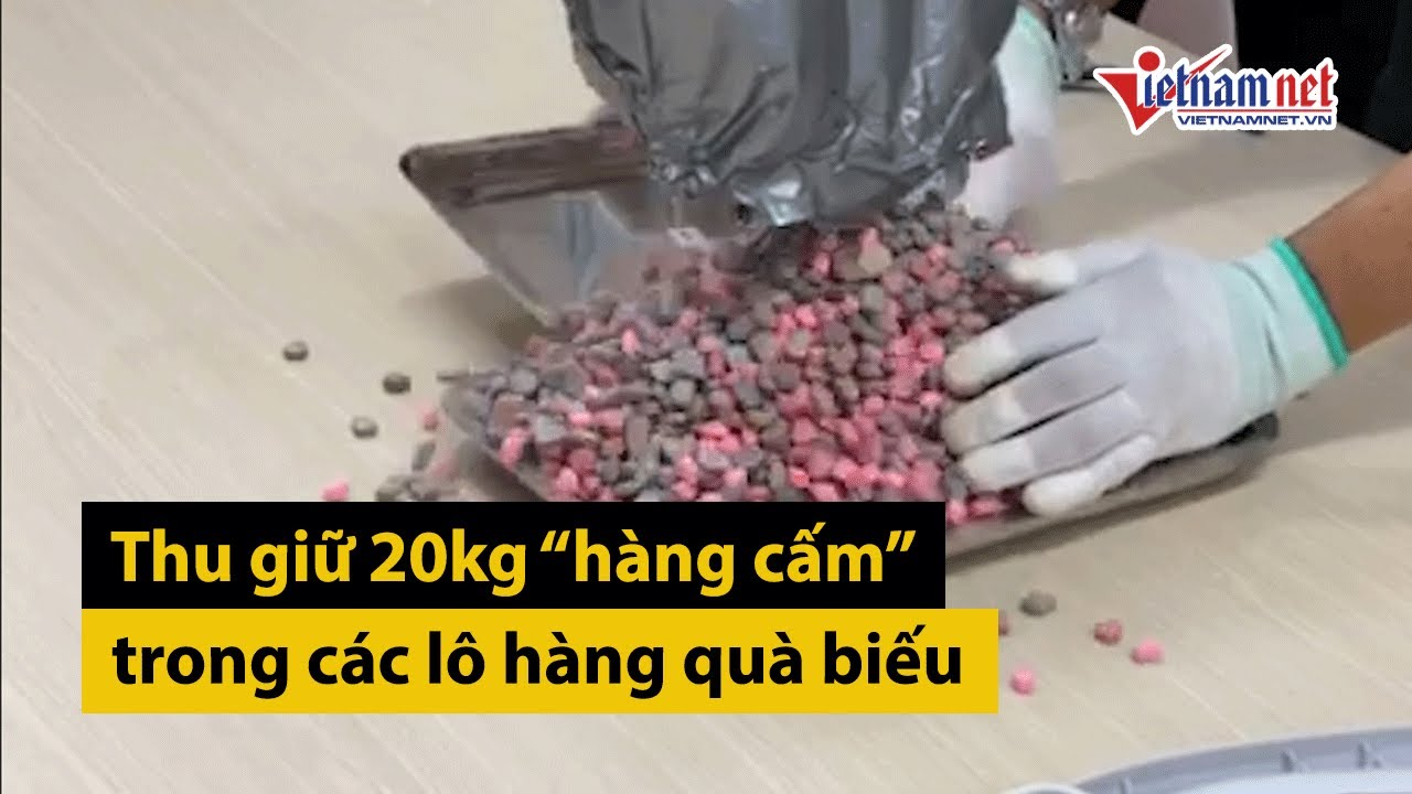 Thu giữ hơn 20kg ma túy trong các lô hàng quà biếu | Tin tức thời sự