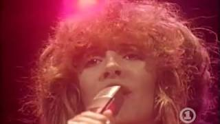 Fleetwood Mac - Sara - Live (Stevie Nicks - HQ - 1979 - Tusk)