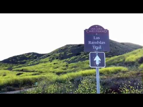 Roller Coaster Ridge Hike 2017 - Steven Nguyen