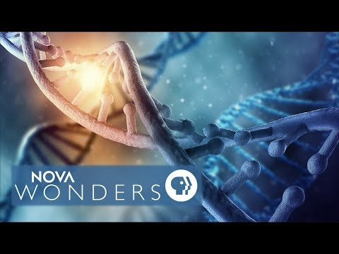 """NOVA Wonders: Can We Make Life?"" Preview"