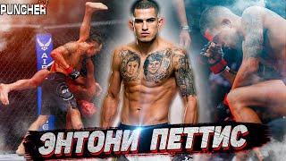 Восхождение ЭНТОНИ ПЕТТИСА.Все бои до UFC.
