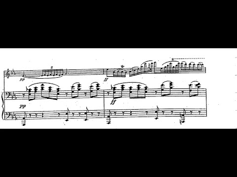 "Chopin-Sarasate ""Nocturne op 9 No 2"" with Sheet Music (violin+piano)"