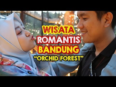from-bandung-with-orchid-|-orchid-forest-cikole!!
