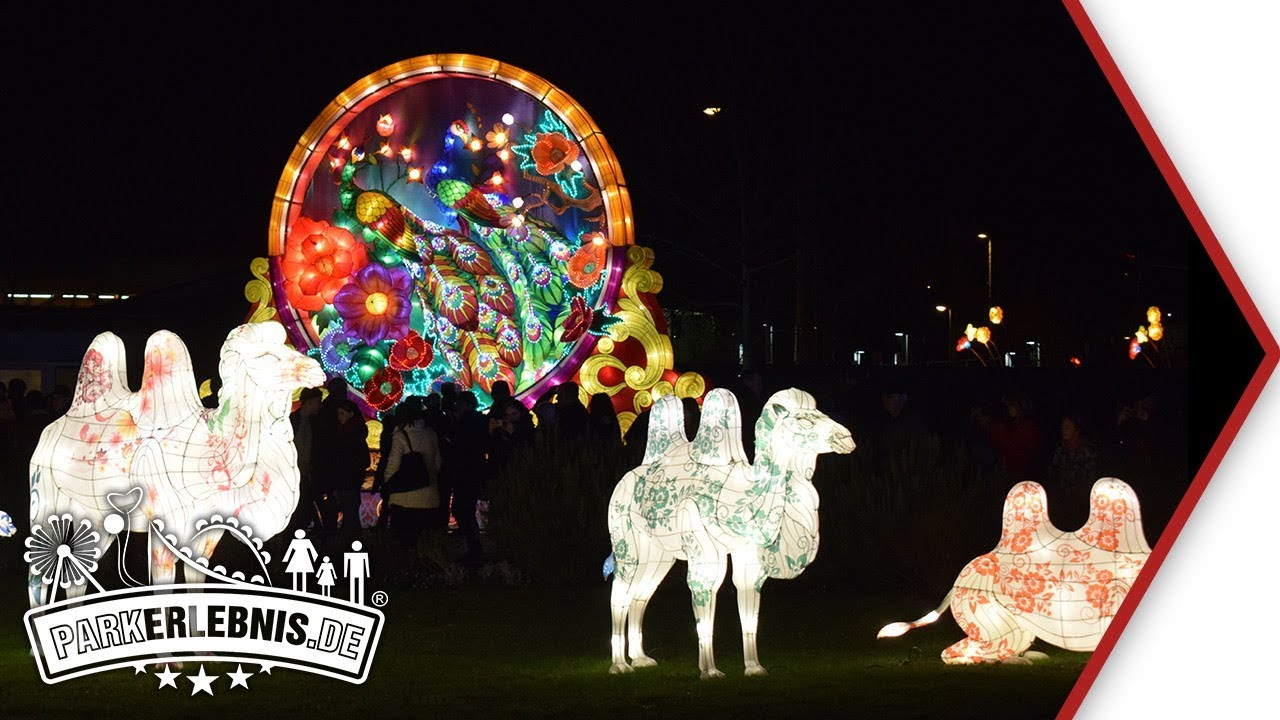 Lichterfest Kölner Zoo