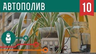 Автополив цветов на Arduino. Проекты для начинающих