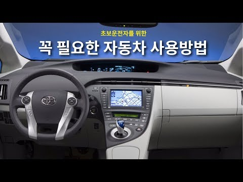 자동차보험순위