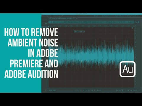 How to Remove Ambient Noise in Adobe Premiere in 30 Seconds | Fstoppers
