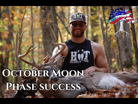 Deer Hunting NY Public Lands; Pope And Young Down, HIITing The Dream | S1:E3