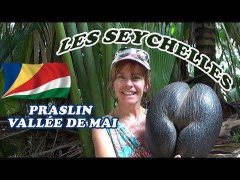 SEYCHELLES : Praslin - La vallée de Mai