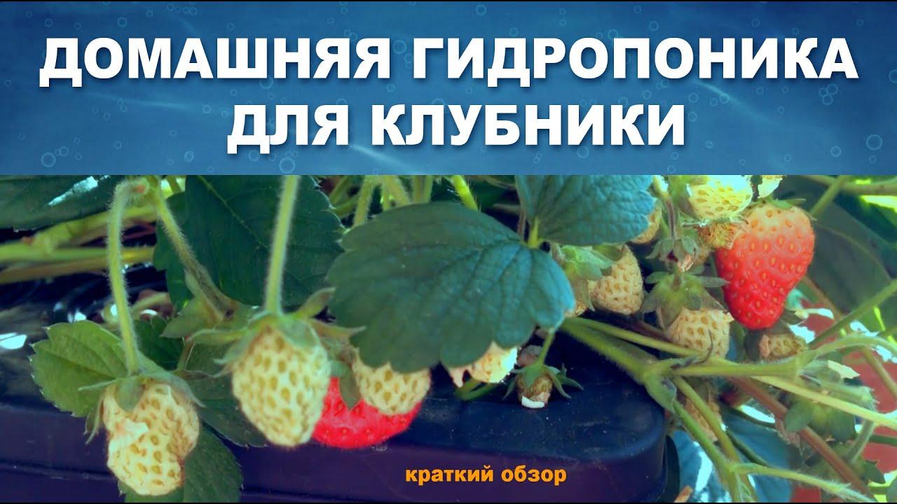 Мефедрон Опт Череповец