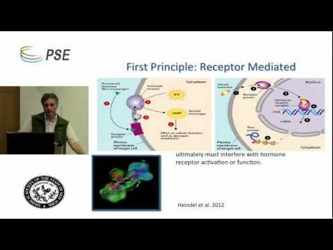 Endocrine Disrupting Chemicals - Adam Law, MD