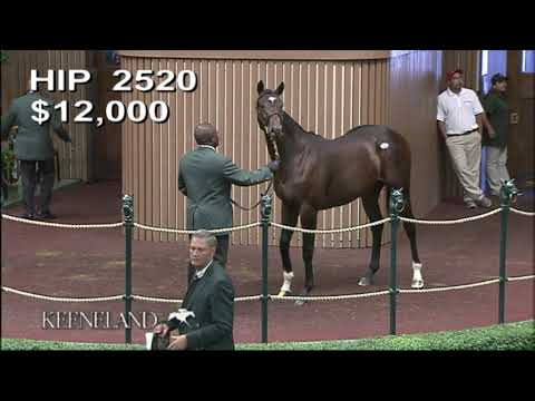 Mitole As A Keeneland September Yearling