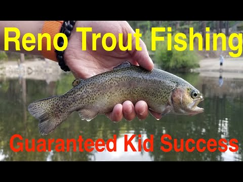 The Best Place To Take Kids Trout Fishing In Reno