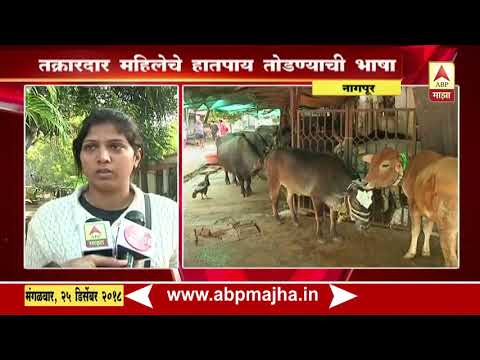 Nagpur : women Beatean up by owner of the buffalo stock