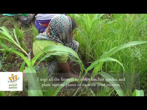 Participatory video: From farm to fork