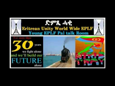 Eritrean War on Cyber