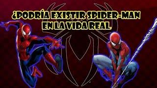 ¿Podría existir Spider-man en la vida real?