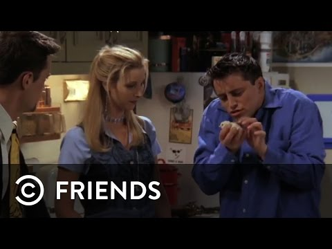 Joey Buys Chandler A Chick | Friends