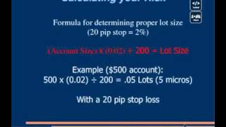 Power of 20 pips a Day - Calculating Risk percentage