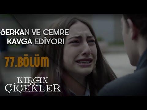Kırgın Çiçekler 77.Bölüm - Serkan ile Cemre'nin Kavgası!