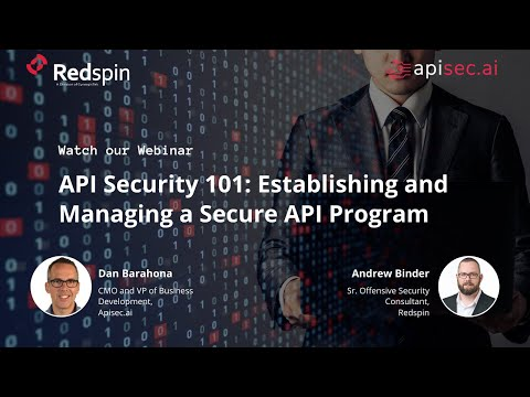 API Security 101: Establishing and Managing a Secure API Program
