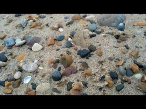 Collecting Sea Glass - Mermaid Whispers