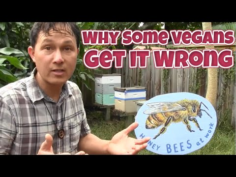 Why Some Vegans Get It Wrong