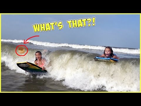 THERE'S SOMETHING IN THE WAVE!!  DO YOU SEE IT?! SmellyBelly TV