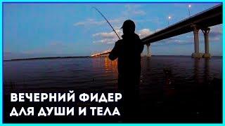 Короткий вечер на Волге. Рыбалка на фидер.