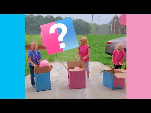 Mel Taylor - Best REACTION to Gender Reveals.... These are Pretty Good!